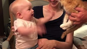 Kitten causes chaos among crying kids