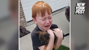 Boy meets his new furry friend in tearful surprise