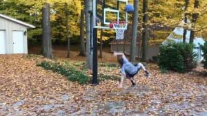 'Fall' into autumn