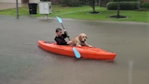 Dog Enjoys Kayaking with Kid on Flooded Street