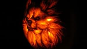 Artist carves realistic dog-o-lantern pumpkin