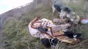 Rider rescues precious puppy