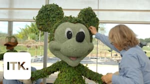 Here's how Disney turns plants into characters