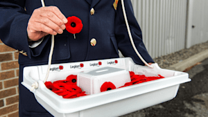 Remembrance Day Theft Sparks Outrage