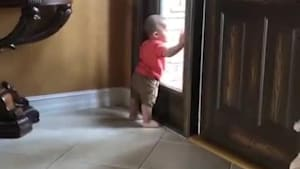 Toddler excitedly taps window looking at dad