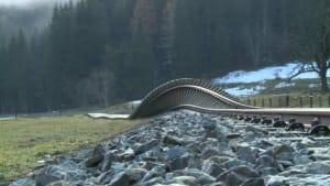 Unwetter in Österreich: Mann durch Schlammlawine getötet