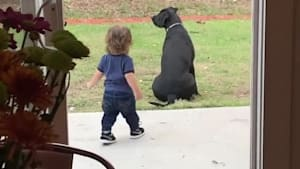 Mom catches toddler giving dog a big hug