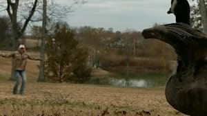 Woman teaches rehabilitating goose to fly again