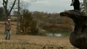 Woman teaches rehabilitating goose to fly again