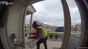 Delivery driver amazed by surprise on doorstep