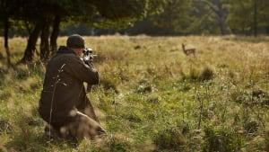 Fataler Fehler: Jäger schießt auf Reh, erst dann erkennt er das Tier