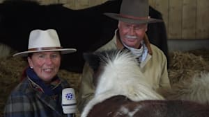 Gut Aiderbichl Ranch: Weihnachtsgeschichte von Shettyfohlen Lady Marian