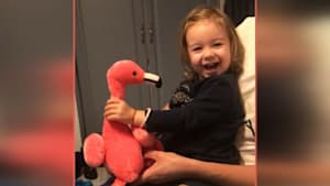 Little girl's joyful reaction to toy flamingo
