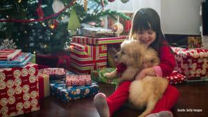 Tiere als Weihnachtsgeschenk? Auf gar keinen Fall!