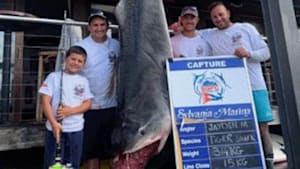 8-Year-Old Reels In Monster Shark