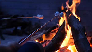 Telescopic stick roasts marshmallows at a safe distance