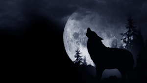 What Is A Wolf Moon Eclipse?