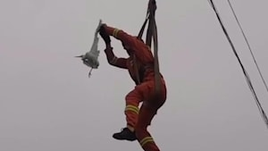 Fireman rappeled from a crane to rescue bird
