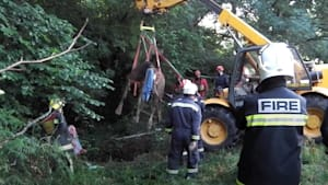 Firefighters rescue a horse from a sinkhole