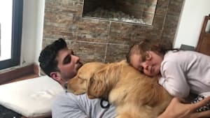 This Golden Retriever gets love from entire family