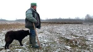 Skandal in Ungarn: Tricksereien bei der Landreform