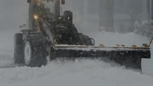 Canadians Send Their Love As Blizzard Batters St. John's, Newfoundland