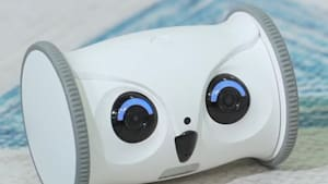 Robot lets you watch your pet while you're away