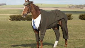This is the world's first tweed suit for a racehorse