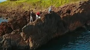 Watch this incredible drone footage from Maui