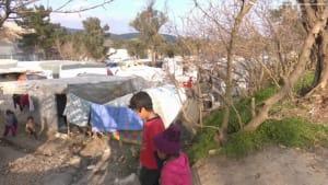 Bauern auf Chios: Leben direkt am Flüchtlingscamp