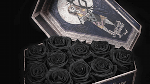 Disney roses, the perfect gift for Valentine's day