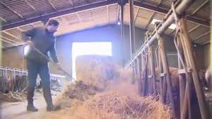 EU-Haushalt: Kleinbauern befürchten Kürzungen