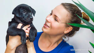 """Vorschlag von PETA: Das Wort """"Haustier"""" abschaffen"""