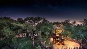 Solarbetriebenes Baumhaus lässt Bewohner über dem südafrikanischen Buschland schweben