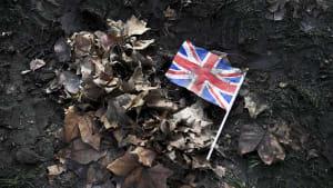 Gutes Englisch, Mindestgehalt: London hat neue Regeln für Einwanderer