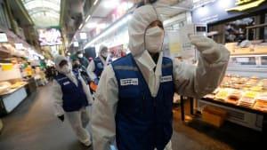 Coronavirus breitet sich schnell weiter aus