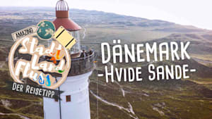 Den besten Fisch Dänemarks gibt es in Hvide Sande! // STADT LAND FLUSS - Der Reisetipp