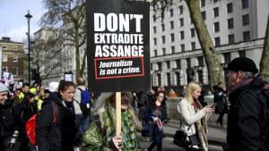 Journalist oder Spion? Britische Justiz berät Auslieferung von Julian Assange (an die USA)