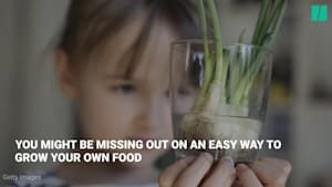 3 Veggies You Can Easily Regrow From Scraps