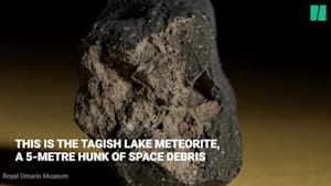 Canadian Meteorite Could Hold Clue To The Origins Of Life