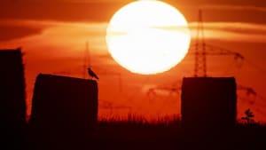 Sommer 2020: Meteorologen warnen vor Rekordhitze