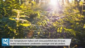 Das Deutschlandwetter - Wochenende & Pfingsten