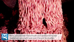 Abgepacktes Fleisch: Ist die Saugeinlage in der Verpackung ein gefährlicher Keimherd?