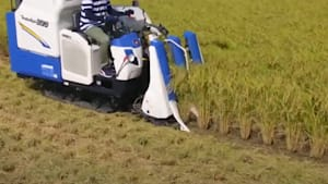 Speedy Japanese tractors make rice harvesting mesmerizingly efficient