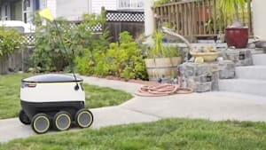 Robots deliver food to your doorstep