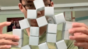 Artist creates kinetic origami that takes on a surreal effect as it moves