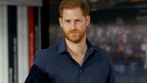 Prinz Harry: Diana hätte sich für Black Lives Matter eingesetzt