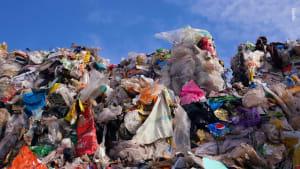 """Nach Tafel-Besuch in Weilheim: Tüten voller Lebensmittel in den Müll gestopft - """"Leider kein Einzelfall..."""""""