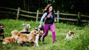 Die fünf anhänglichsten Hunderassen der Welt