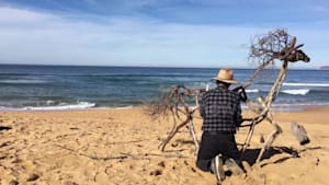 Australian Sculptor creates an amazing horse from driftwood by the ocean